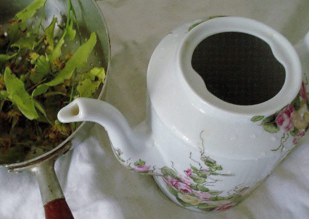 Tisane de tilleul - Lime tree tea