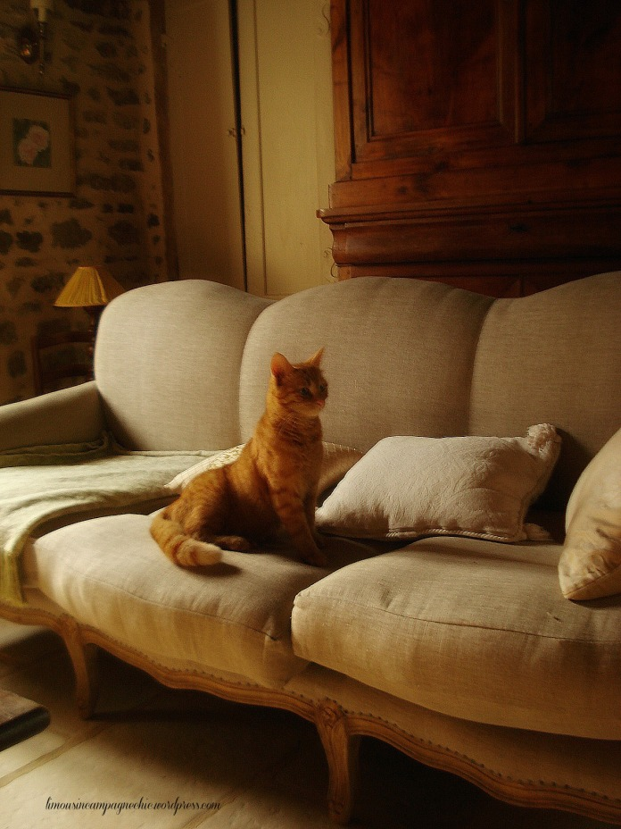 Louis-Gustave prèfère le canapé - Louis-Gustave prefers the sofa