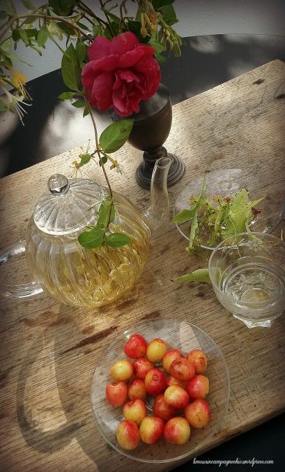 Tisane fleurs de tilleul