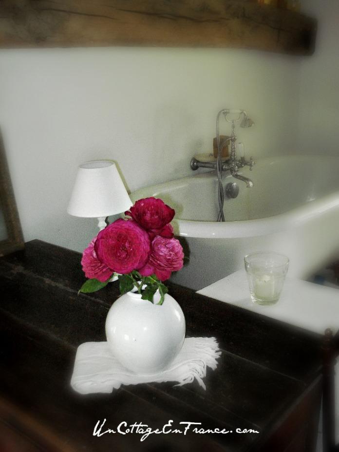 Roses Parfum de Honfleur - Honfleur Fragrance Roses