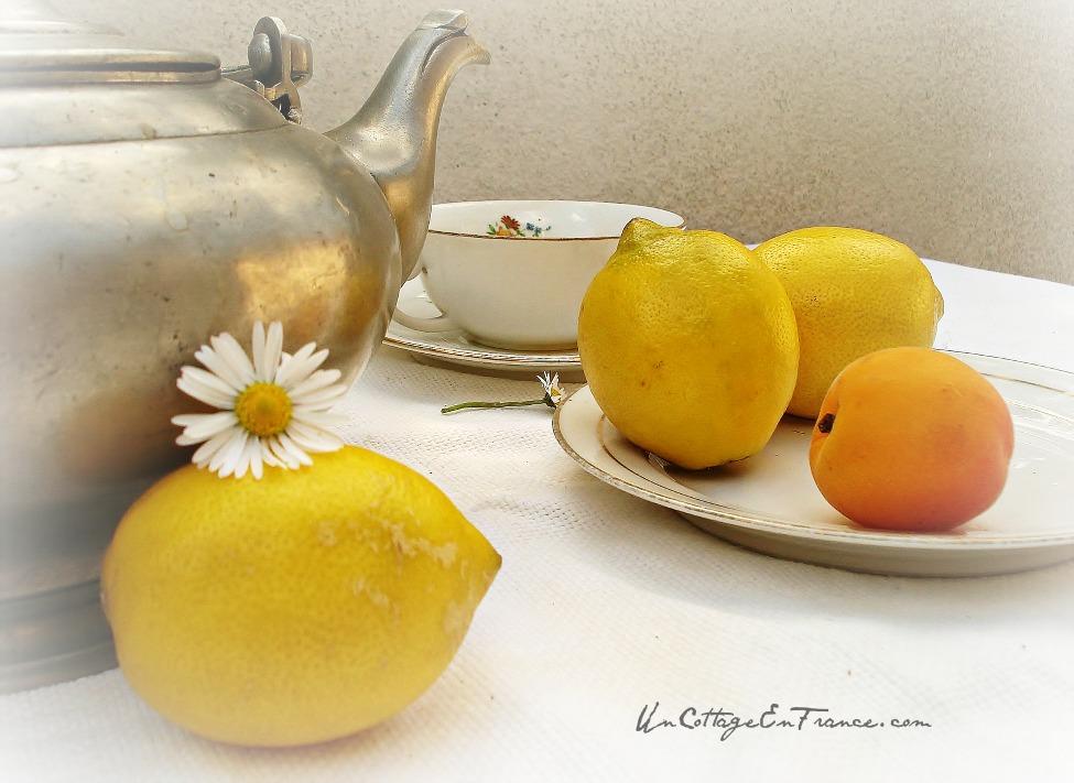 Thé au citron dans le champ