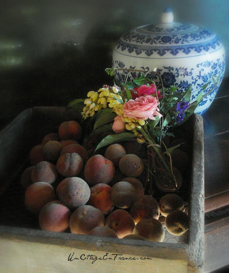 Un Cottage en France - Recolte des peches 9