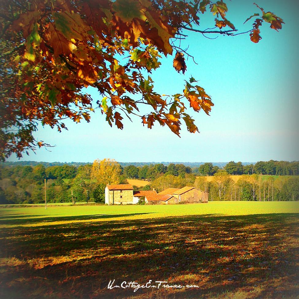 Jolie ferme en automne près de Peyrat de Bellac