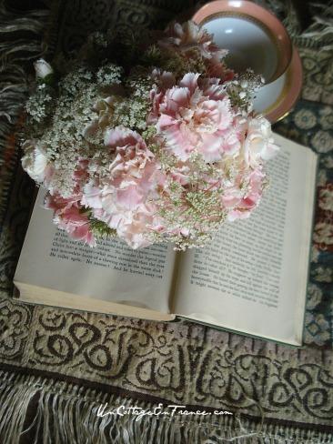 Les oeillets roses pales 1 - Un Cottage En France.com