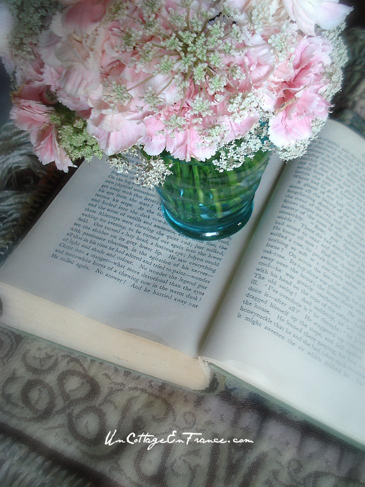 Les oeillets roses - Un Cottage En France.com