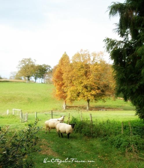 Lagudet en Limousin