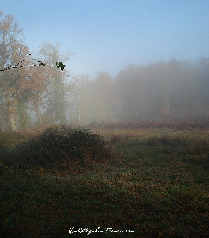 Promenade en Limousin au petit matin - Early morning stroll in Limousin