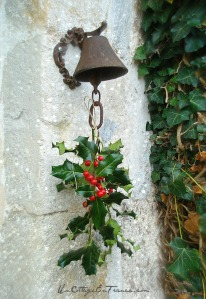 Houx de Noel - Un Cottage En France