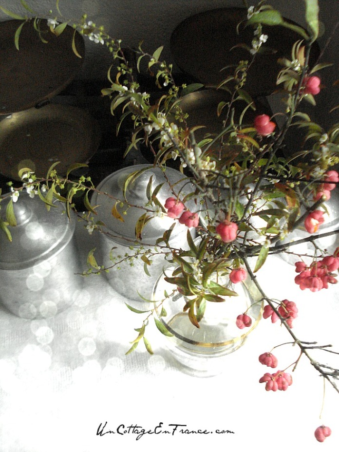 Le bouquet de fusain de Blanzac