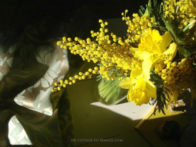 Bouquet jaune jonquilles et mimosas 1