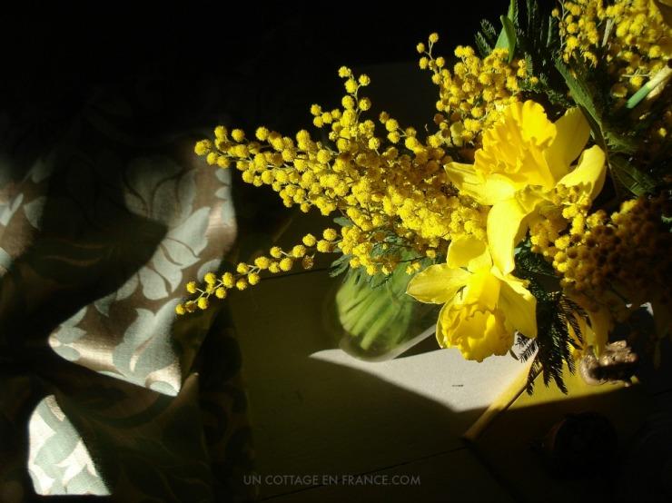Bouquet jaune jonquilles et mimosas
