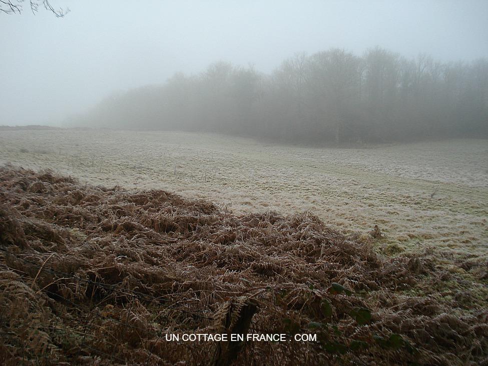 Le Chemin de Confolens en hiver 2