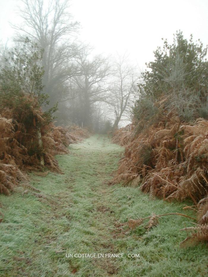 Randonnée en Limousin en janvier 4