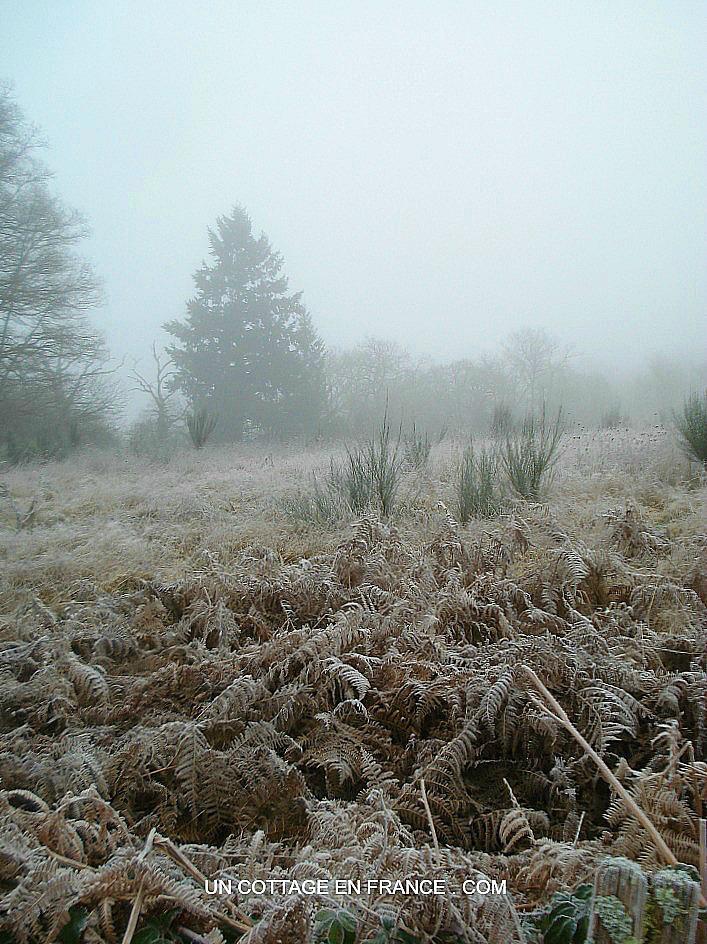 Le Chemin de Confolens en hiver