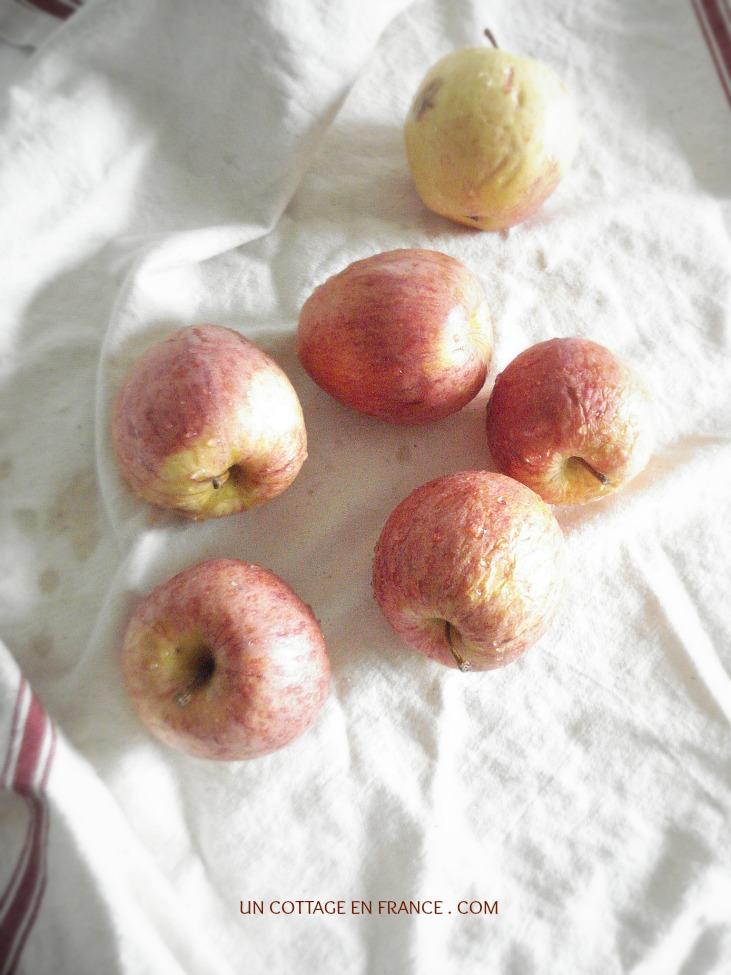 Pommes du Limousin - Limousin apples
