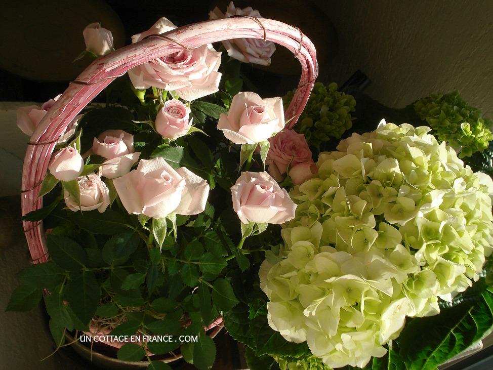Hortensias et rosiers nains Un Cottage En France 3