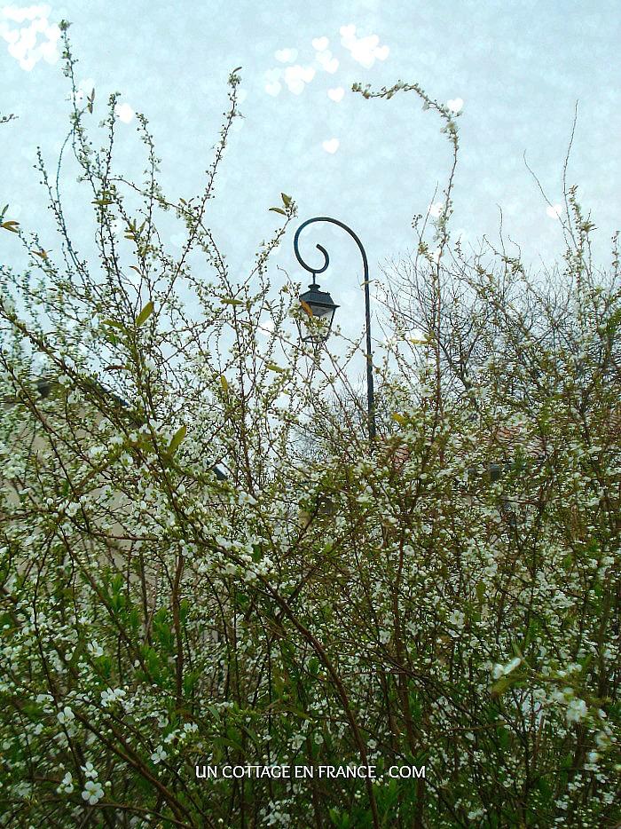 Le printemps cottage chic