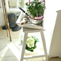 Rose pâle : ...et blanc, mini roses et hydrangeas | Candid pink: ...and white: mini roses and hydrangeas