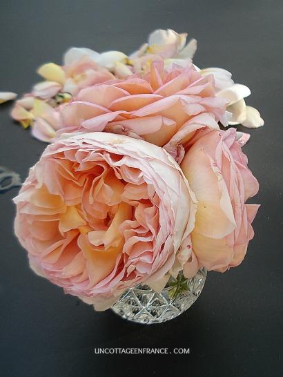 bouquet de roses de fete des meres