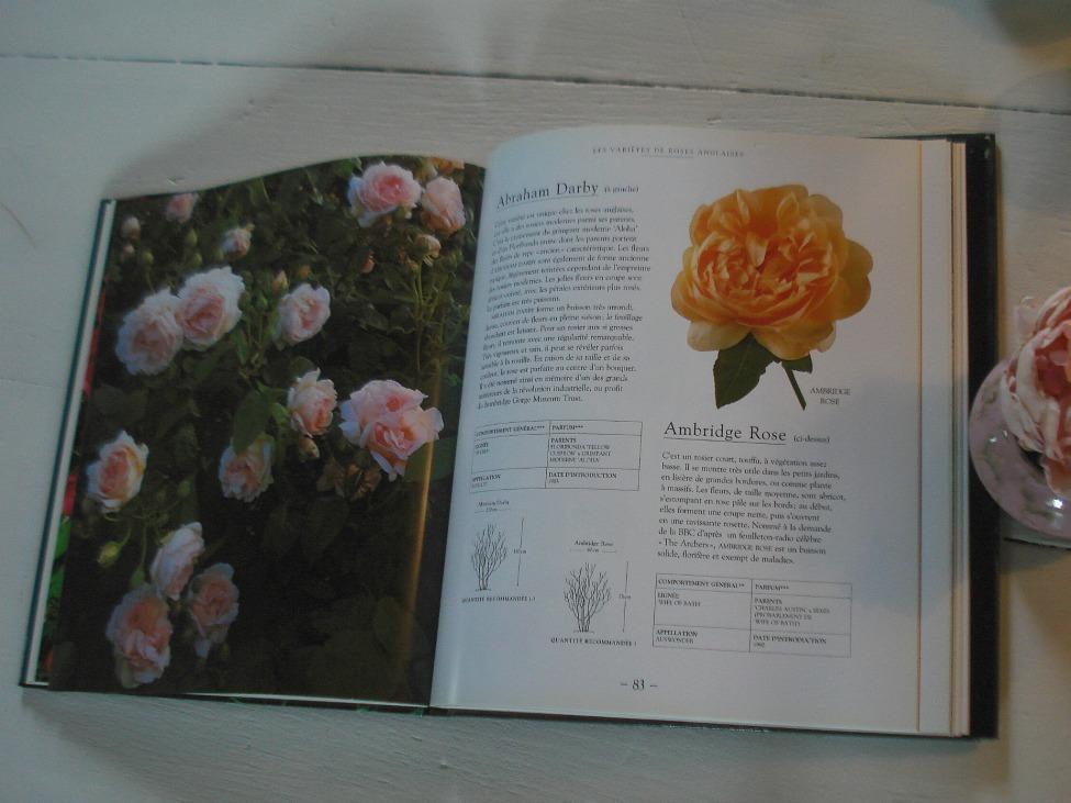 David Austin, Book The Englisjh Roses, Bordas Ed.