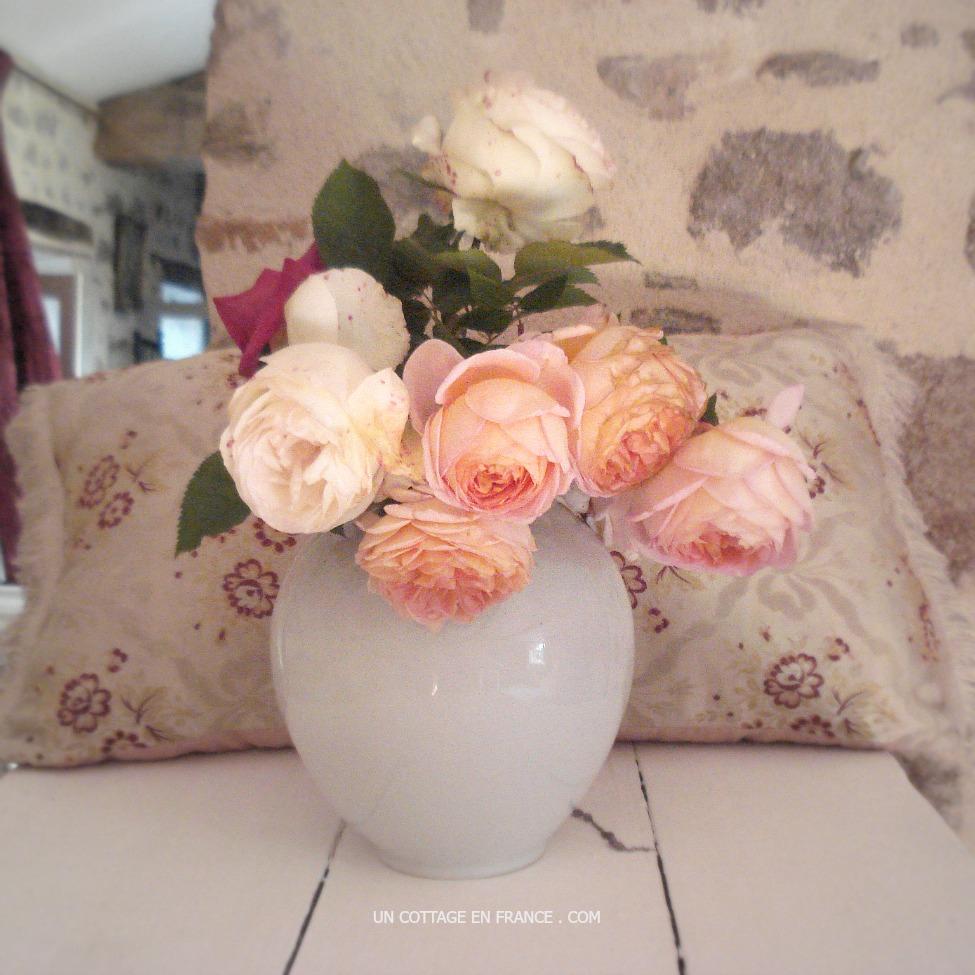 Abraham Darby de David Austin en bouquet