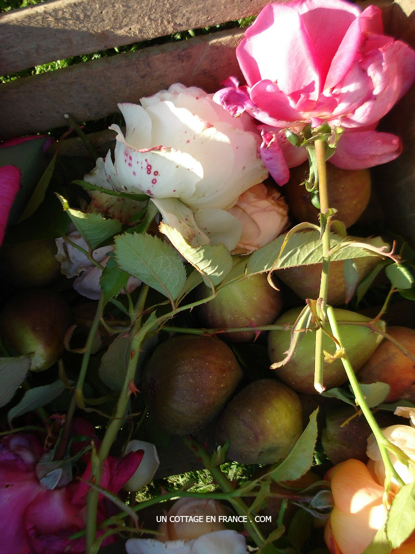 Roses et figues, blog maison de campagnehttp://uncottageenfrance.com/2015/10/21/il-y-a-des-bouquets-plein-denergie-some-bouquets-convey-energy-more-than-others/