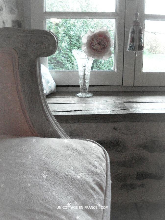 Et le Petit Prince s'en alla voir les roses