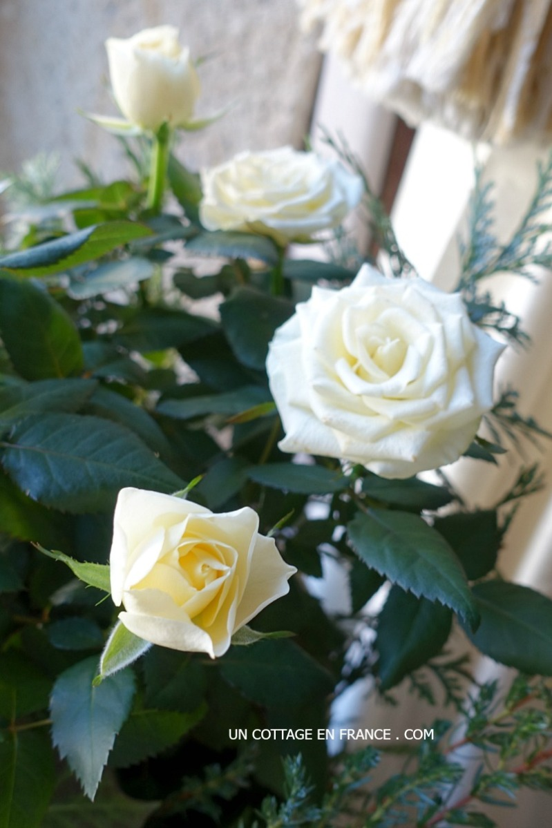 Fleurs blanches : ambiance en brun, vert et blanc avec des roses blanches | White flowers: white, green and brown ambiance with white roses