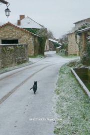 Neige de janvier 2016 Le Liboureix 2