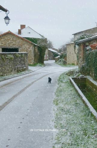 Neige de janvier 2016 Le Liboureix - Miles part à l'aventure