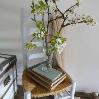 Floraisons blanches : des branches de cerisiers sur la chaise grise | White blossoms: cherry blossoms on the grey chair