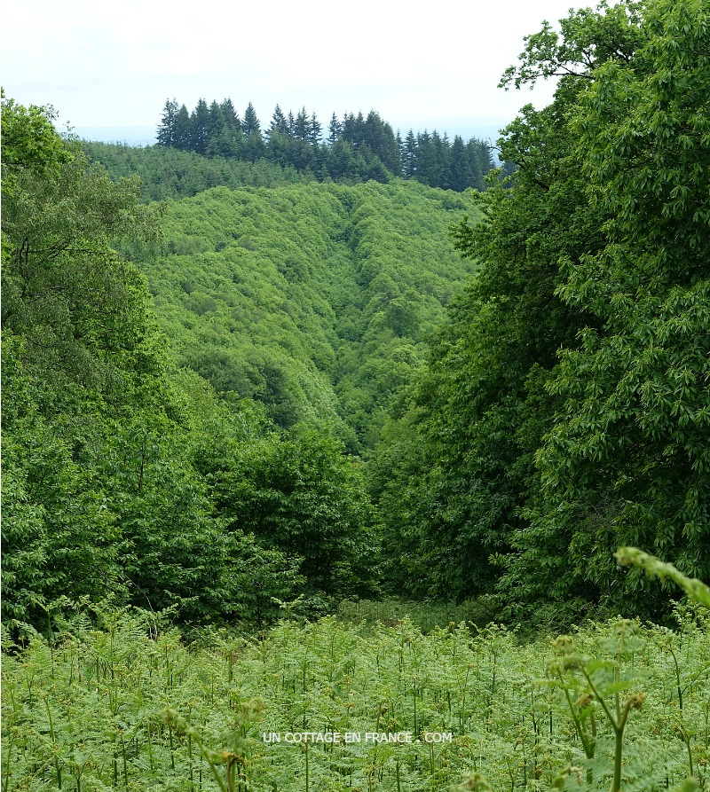 Les monts de Blond en Haute-Vienne