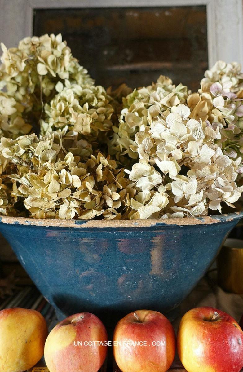 Saveurs tradi : de la lande l'hiver... à la recette du beurre persillé   Hearty: from pastures in winter... to a garlic butter recipe)