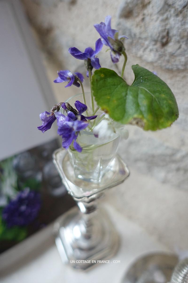 Blog maison jardin Limousin