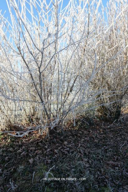 Blog nouvelle aquitaine
