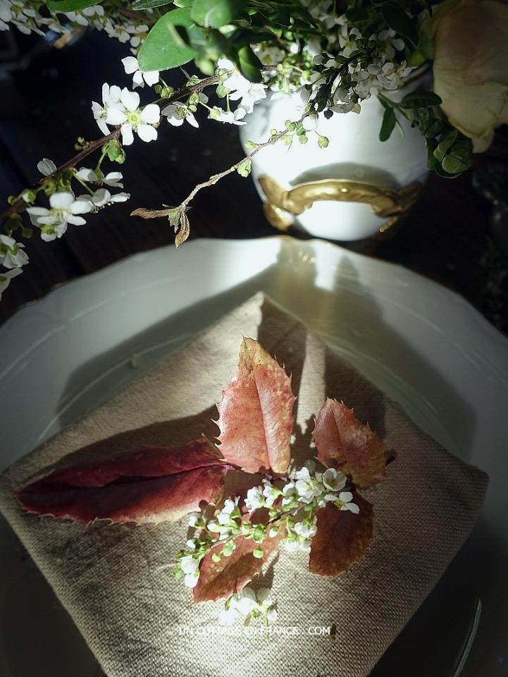 Deco simple sur l'assiette (Reusing twigs of the bouquet)