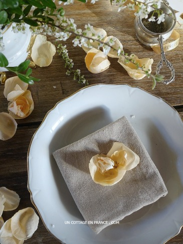 Réutilisation des fleurs séchées (Reusing faded flowers)