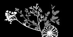 header-twigs-8