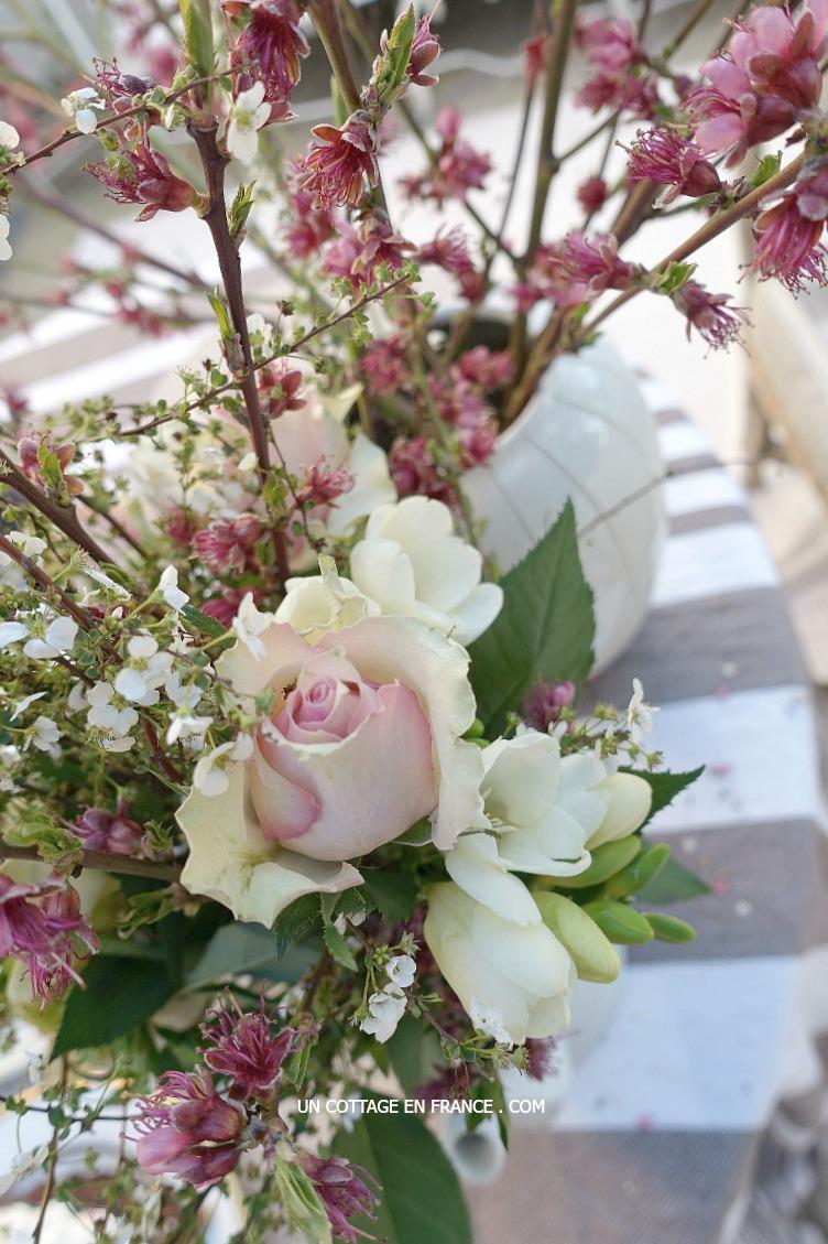 Bouquet de mars sur la terrasse (A March bouquet on the patio)