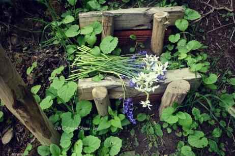 Le bouquet de narcisses du printemps, Blog campagne chic s