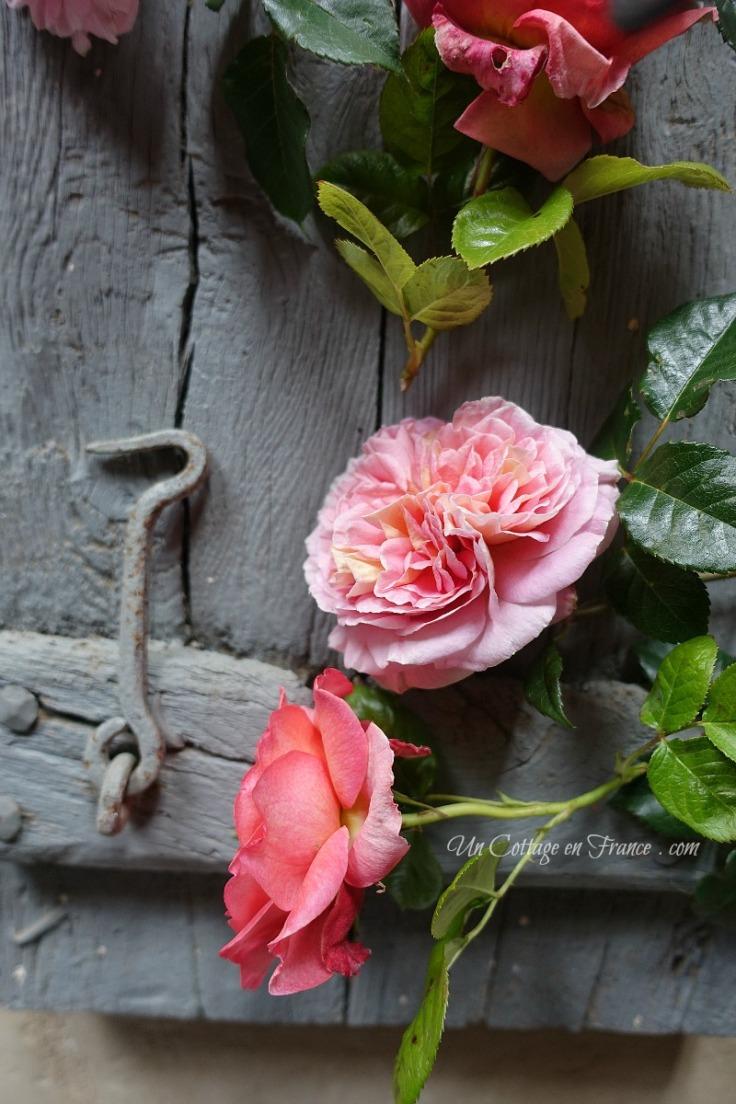 Blog cottage romantique