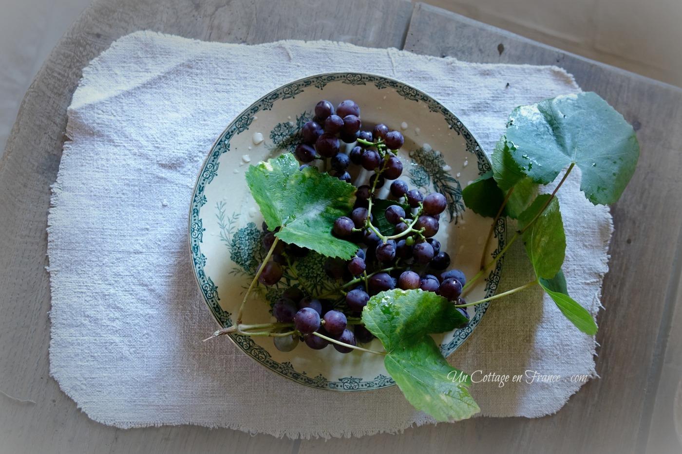Le muscat de la vigne du cottage, blog vivre à la campagne G C