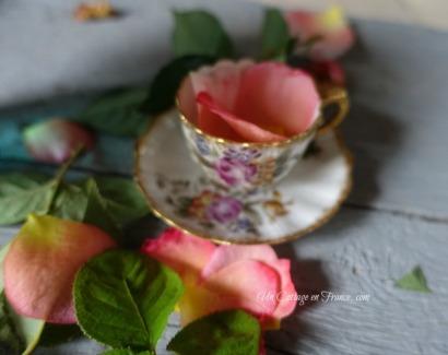 La mini tasse de collection en porcelaine de Limoges (The Limoges porcelain collection cup)