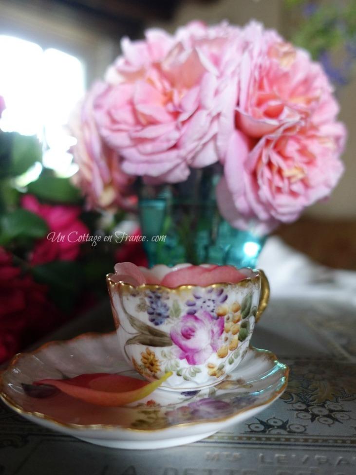Les roses du cottage de juillet (July cottage roses)