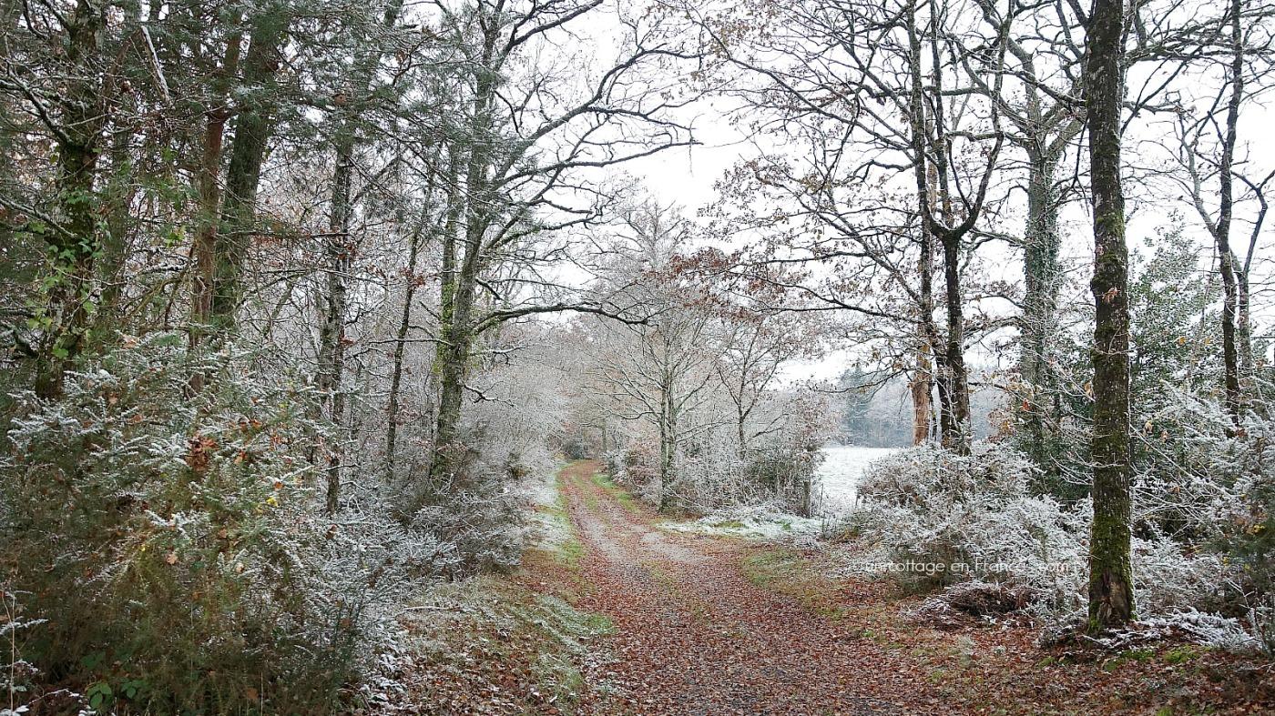 Allée d'automne en Limousin,