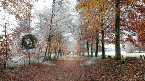 Allée d'automne en Limousin, blog cottage chic et couronnes