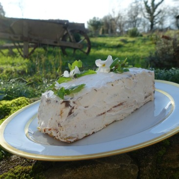 buche du nouvel an shabby chic, blog Un Cottage en France 10