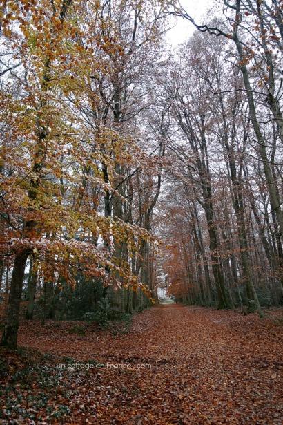 chemin Limousin