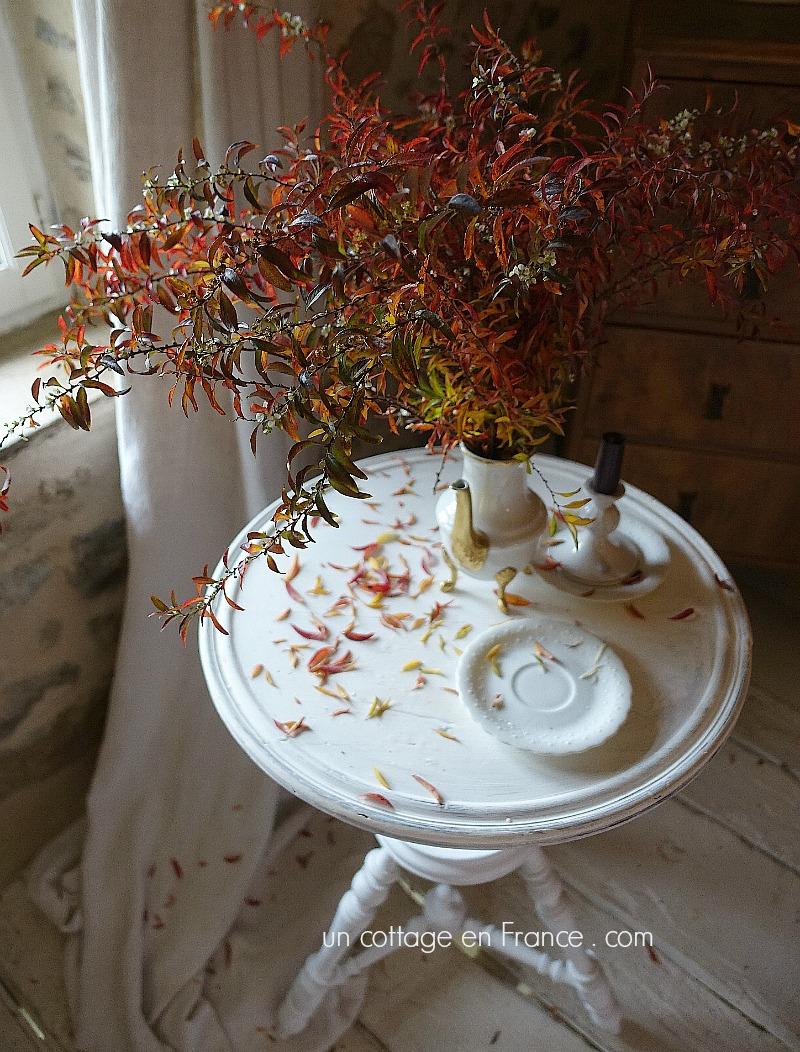 Le bouquet de spirée d'hiver (Winter spirea bouquet)
