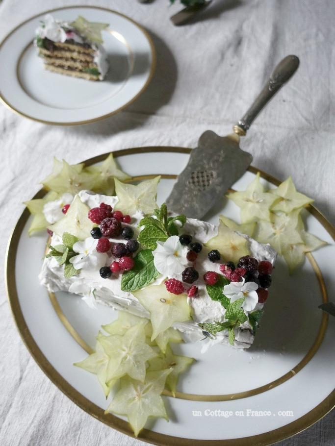 Après l'ajout des fruits rouges congelés (After the adding of frozen red berries)